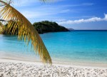 The-Caribbean